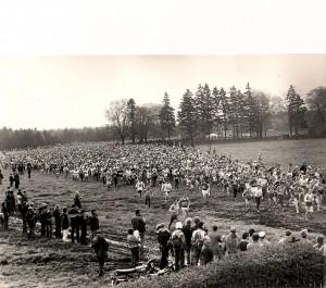 Rennsteiglauf 1984