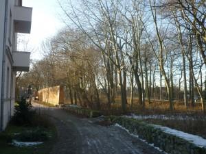 Spaziergang Samstag P1020013 Kommunikation
