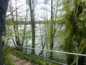 Lindenallee klein WEg unter BrückeP1020534
