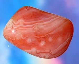 claudia-aprikosenachat-eins