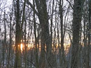 Sonne drei