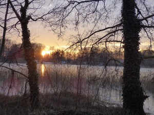 Sonne fünfzehn
