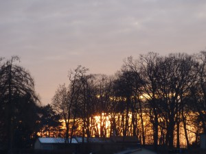 Sonne sieben