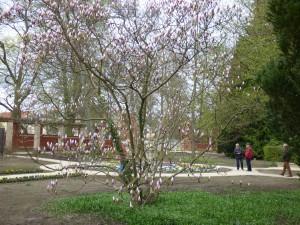 Tempelgarten drei