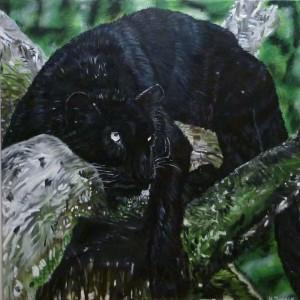 Tomalik Panther