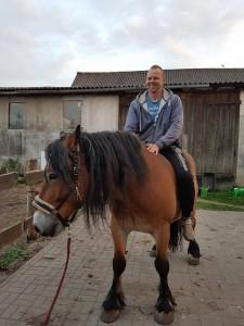 Ronny Ostwald Pferd neu