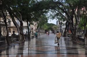 Havanna neun