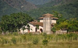 Kuba elf