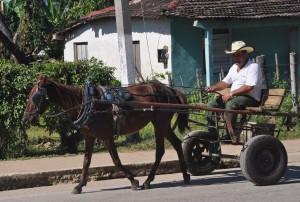 Kuba sechs